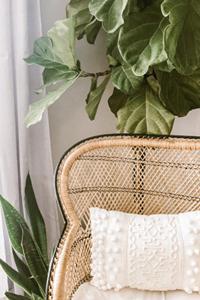 salon boho, fauteuil en osier, coussin en lin, plante verte